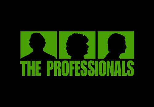 TheProfessionals